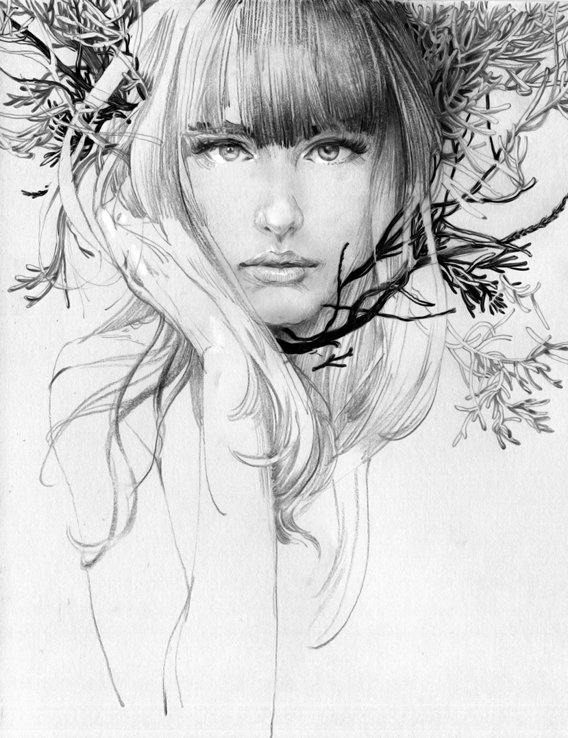 pencil drawing woman tree by zhang weber